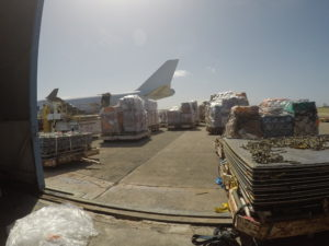 new york jet charter cargo